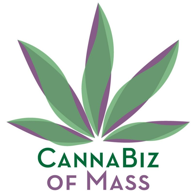 Cannabis Business Association formed in Massachusetts