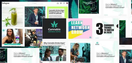 Photo for: Creating Content For Your Cannabis Drinks Brand