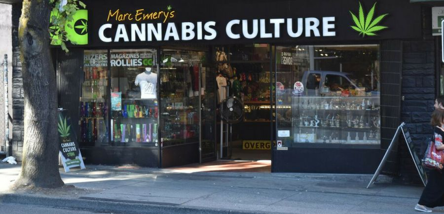 Photo for: How to Start a Cannabis Drinks Business
